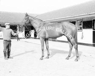 Boucher with Lester Piggott (b632-01)